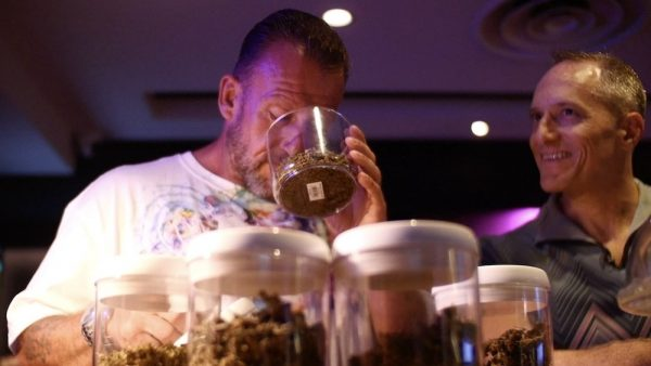 Joe's Smokers Club & Cannabis Collective with Dorian Yates