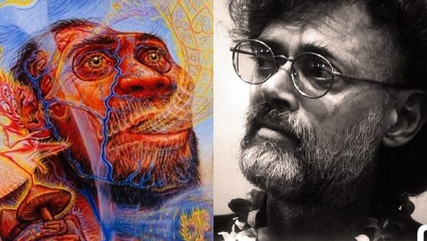 Curious Monkey - Dennis McKenna on Terence McKenna